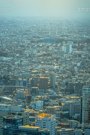 サンシャイン60から見える街並みの写真素材 [FYI04289997]