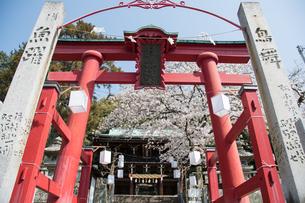 日尾八幡神社の写真素材 [FYI04290207]