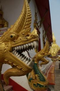 黄金の龍 黄金のドラゴン ラオスの寺院の写真素材 [FYI04290353]