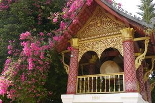 ラオスの神社 ラオスの寺院 東南アジアの寺院の写真素材 [FYI04290358]