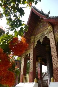 ラオスの神社 ラオスの寺院 東南アジアの寺院の写真素材 [FYI04290362]