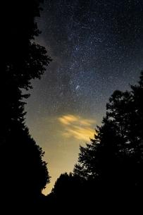 森と天の川の写真素材 [FYI04290716]
