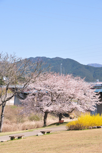 阿木川公園の写真素材 [FYI04290725]