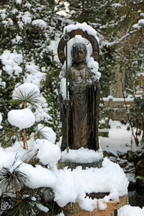 冬の高野山奥之院参道の写真素材 [FYI04290795]