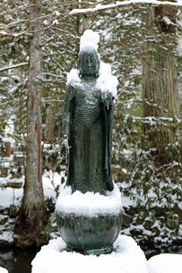 冬の高野山奥之院参道の写真素材 [FYI04290798]