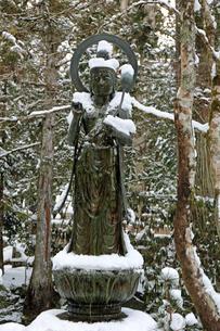 冬の高野山奥之院参道の写真素材 [FYI04290799]