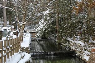 冬の高野山奥之院参道の写真素材 [FYI04290801]
