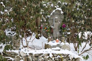 冬の高野山奥之院参道の写真素材 [FYI04290803]