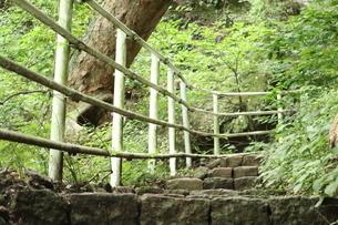 手すりのある山道の写真素材 [FYI04290816]