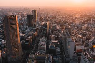 夕暮れの東京・渋谷の街並みの写真素材 [FYI04290910]