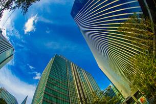 横浜みなとみらいのオフィス街と秋空の写真素材 [FYI04291110]