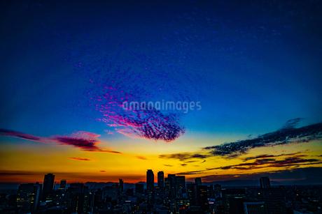 名古屋テレビ塔からの夕景の写真素材 [FYI04291127]