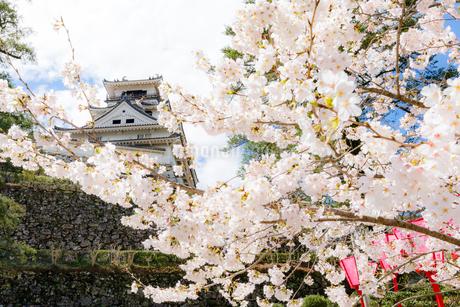 高知城の写真素材 [FYI04291174]