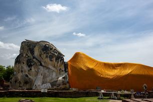 タイ アユタヤ遺跡の写真素材 [FYI04291190]