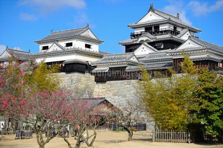 早春の松山城の写真素材 [FYI04291568]