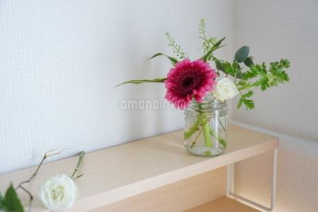 花の写真素材 [FYI04291700]