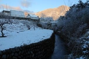 雪景色の朝の写真素材 [FYI04291730]