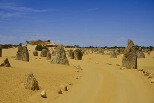 オーストラリア・西オーストラリア州にあるナンバン国立公園内の砂漠に広がる奇岩群のピナクルズの中に石を並べて作った車道の写真素材 [FYI04292682]