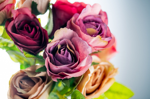 Artificial antique roses on white background.の写真素材 [FYI04292862]