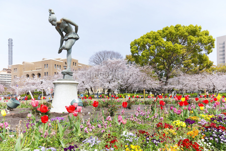 満開を迎えた鶴舞公園の桜の写真素材 [FYI04292903]
