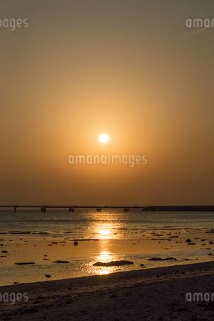 オレンジ色の夕日と飛行場の誘導灯と砂浜の写真素材 [FYI04293149]