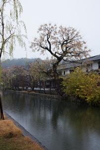 小雨降る早朝の倉敷美観地区の写真素材 [FYI04293246]