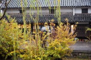 小雨降る早朝の倉敷美観地区の写真素材 [FYI04293247]