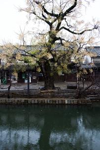 小雨降る早朝の倉敷美観地区の写真素材 [FYI04293249]