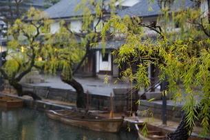 小雨降る早朝の倉敷美観地区の写真素材 [FYI04293253]