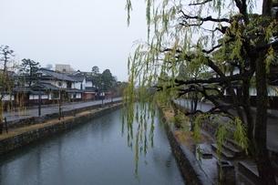 小雨降る早朝の倉敷美観地区の写真素材 [FYI04293260]