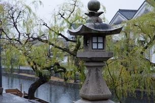 小雨降る早朝の倉敷美観地区の写真素材 [FYI04293266]