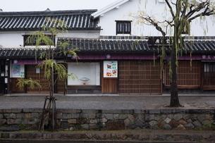 小雨降る早朝の倉敷美観地区の写真素材 [FYI04293286]
