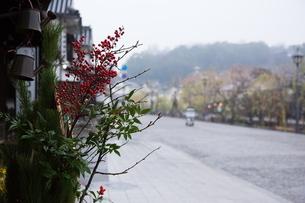 小雨降る早朝の倉敷美観地区の写真素材 [FYI04293288]