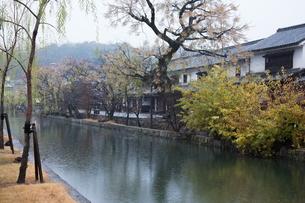 小雨降る早朝の倉敷美観地区の写真素材 [FYI04293292]