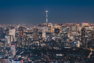 東京スカイツリーと都心の夜景の写真素材 [FYI04293421]