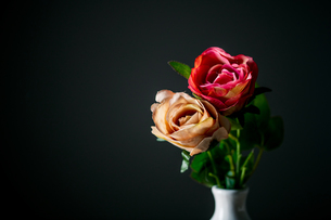 Artificial antique roses in vase on dark background.の写真素材 [FYI04293623]