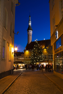 タリン旧市街  クリスマスマーケット夜景  エストニアの写真素材 [FYI04293780]