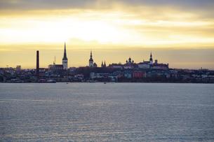 タリン旧市街(タリン歴史地区)遠景  エストニアの写真素材 [FYI04293785]