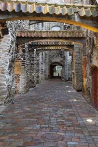 カタリーナ通り タリン旧市街  エストニアの写真素材 [FYI04293791]