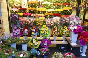 街角の花屋 タリン旧市街  エストニアの写真素材 [FYI04293793]