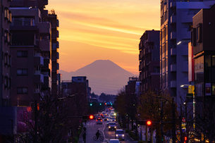富士山夕景の写真素材 [FYI04293902]