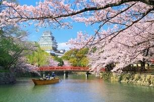 姫路城と桜と和船の写真素材 [FYI04294379]