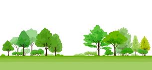 生い茂る木の風景イラストのイラスト素材 [FYI04294491]