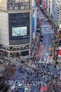 渋谷スクランブル交差点の写真素材 [FYI04294634]