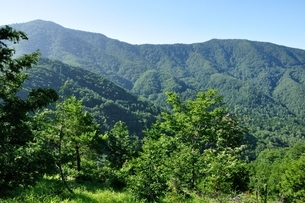 黒岳と破風山の稜線の写真素材 [FYI04294731]