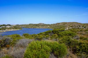 オーストラリア・西オーストラリア州にある海面の澄んだギルダートンビーチとムーア川の交わる所の光景の写真素材 [FYI04295158]