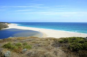オーストラリア・西オーストラリア州にある海面の澄んだギルダートンビーチとムーア川の交わる所の光景の写真素材 [FYI04295159]
