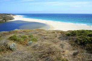 オーストラリア・西オーストラリア州にある海面の澄んだギルダートンビーチとムーア川の交わる所の光景の写真素材 [FYI04295160]