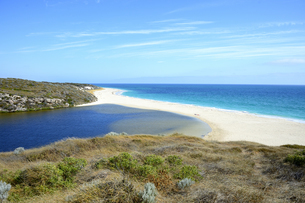 オーストラリア・西オーストラリア州にある海面の澄んだギルダートンビーチとムーア川の交わる所の光景の写真素材 [FYI04295162]