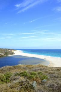 オーストラリア・西オーストラリア州にある海面の澄んだギルダートンビーチとムーア川の交わる所の光景の写真素材 [FYI04295164]